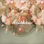 ariskea 2014 Logo